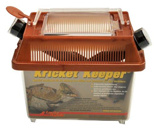 Lucky Reptile KK-1 Kricket Keeper klein, Terrarium zur Futtertierhaltung