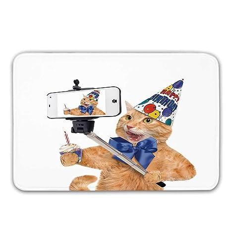 Divertido tapete de la puerta de entrada, cumpleaños Gato ...