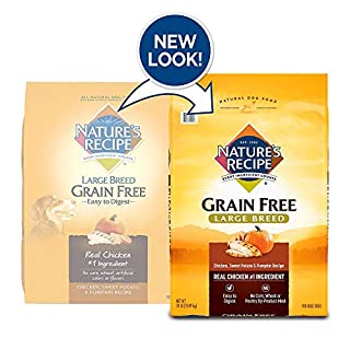 Nature's Recipe Grain Free Large Breed Dry Dog Food, Chicken, Sweet Potato & Pumpkin Recipe, 24 Pounds, Easy to Digest