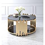 Acme Furniture 84490 Tanquin Coffee Table, Black Glass/Gold