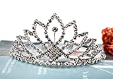 Vinida Crystal Tiara Crown Headband for Wedding Prom Bridal Birthday (Sliver)