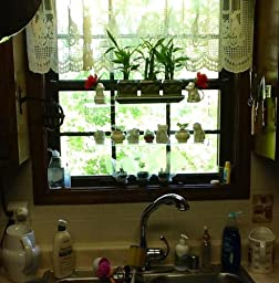 Hanging Window Plant Shelves Home Kitchen