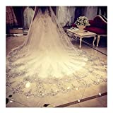 Foreverwedding Women's Custom Lace Crystals 3M Length Wedding Bridal Veil With Comb