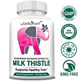 Milk Thistle – Max Strength 24×1 Seed Extract – 400mg per Veg Cap – 80% Silymarin Flavanoids – for Liver Health and Detox – Powerful Antioxidant – 90-Day Supply For Sale
