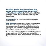 EMUAID Ointment - Eczema Cream. Regular Strength