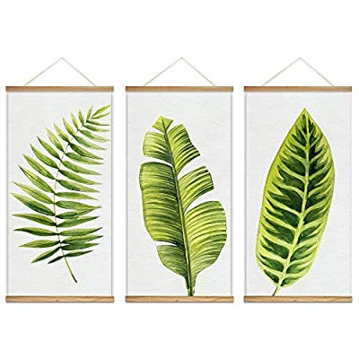 Hanging Poster with Wood Frames Beautiful Green Plants Home Wall x3 Panels, Quality Creation, Lovely Handicraft