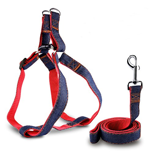 AROVA Dog Leash Harness, Adjustable & Durable Leash Set & Heavy Duty Denim Dog Leash Collar for Small Dog, 2pcs Rescue No-Pull Leash and Harness Set, Perfect for Daily Training Walking Running