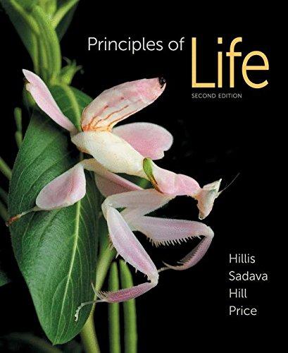 Principles of Life - Music Tech Dictionary