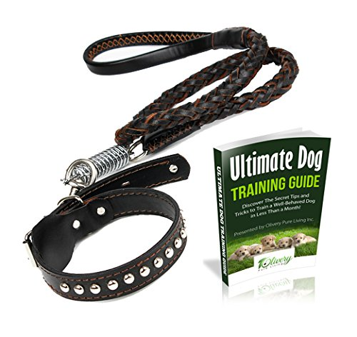 Agility Dog Collar (Olivery Deluxe Braided Leather Dog Leash Studded Collar Set with Hole Puncher Ideal for Walks and Agility Obedience Training Large Breeds Pet Supplies (Black))