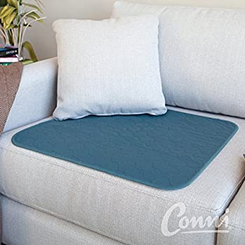 Conni Large Chair Pad, Teal Blue, 20 Inch x 24 Inch