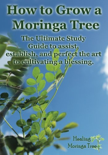 How grow Moringa Tree cultivating product image