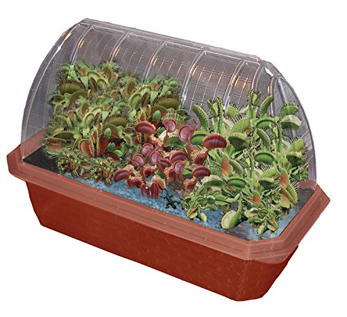 Fly Trap Fiends Windowsill Greenhouse, Teaching Toys, 2017 Christmas Toys