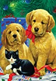 Best Toland Home Garden Christmas Decorations - Toland Home Garden Golden Puppies 12.5 x 18-Inch Review