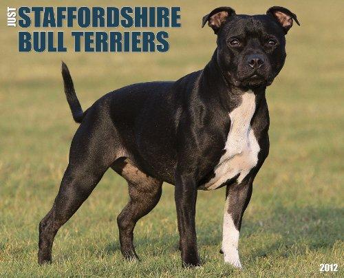 - Just Staffordshire Bull Terriers 2012 Calendar