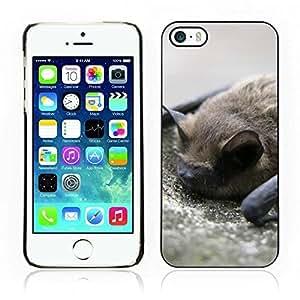 Kellie-Diy Hot Style cell phone PC case cover ou7QoypGWXg // Bat // Apple Iphone 5 5S