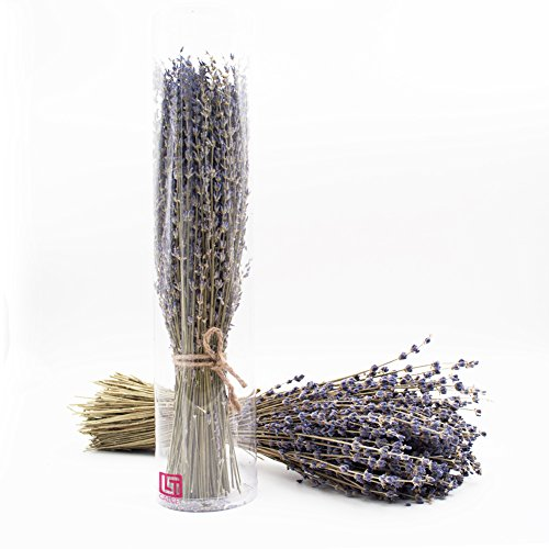 Lavender Bundles,200pcs Lavender Flowers, Real Natural Lavender bunch Dried Flower Royal Velvet Lavender Bundles for DIY Home Office Party Wedding Decor (Stem Lavender)