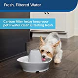 PetSafe Drinkwell Replacement Carbon Filters, Dog