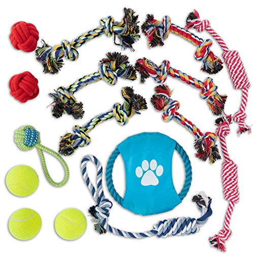 OLIVIA & AIDEN Mascota Pets Dog Toys - Interactive Dog Training Set - Rope Frisbee, Interactive Rope and Knot Toys, 3 Dog Tennis Balls |16 Pack
