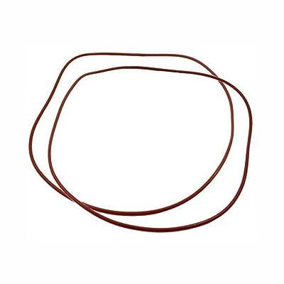 Raypak 006713F O Ring Gasket (2) 185-405 206-406 207-407-Kit: Garden & Outdoor