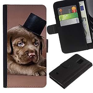 Stuss Case / Funda Carcasa PU de Cuero - Chocolate Retriever Puppy Brown Dog Hat - Samsung Galaxy S5 Mini, SM-G800