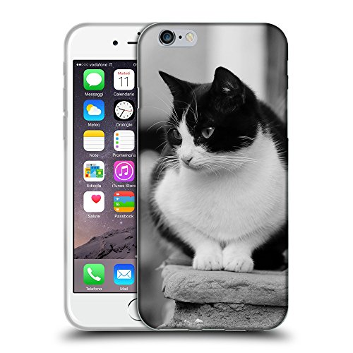 Just Phone Cases Coque de Protection TPU Silicone Case pour // V00004183 Chat noir et blanc sur les escaliers // Apple iPhone 6 6S 6G PLUS 5.5""