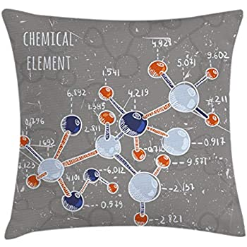 Ambesonne Grunge Throw Pillow Cushion Cover, Chemistry Laboratory with Display Formula Science Graphic Design Print, Decorative Square Accent Pillow Case, 16