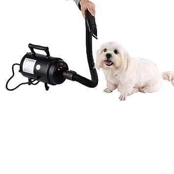 yunt - Tendedero secador sèche-poils 2800 W para perro/gato de mascotas con motor (negro): Amazon.es: Productos para mascotas