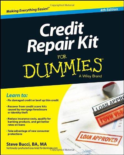 Credit Repair Dummies Steve Bucci product image