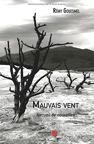 Mauvais vent (French Edition) ebook