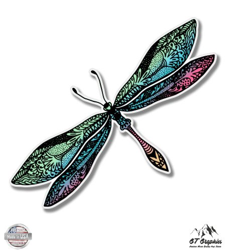 Colorful Dragonfly - 3
