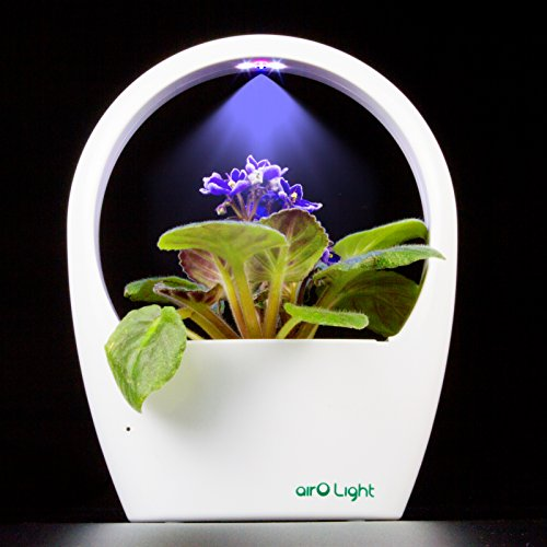 SimLife LED Plant Grow Light Kit Indoor Herb Garden Desktop USB Grow Lamp Auto Mode for Plants Hydroponics Greenhouse Office Great for Growing Fresh Herbs, Seed Not Including, Great Gift (White) by SimLife (Image #1)