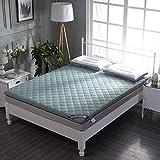 C&DIAN Folding Mattress,Mattress Pad,Tatami Mattress,Comfort Portable Bedroom-A 90x200cm(35x79inch)