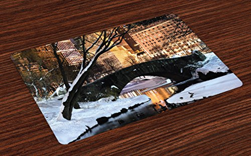Lunarable NYC Place Mats Set of 4, New York City Manhattan Central Park Panorama in Winter Bridge Freezing Lake at Dusk, Washable Fabric Placemats for Dining Room Kitchen Table Decoration, -
