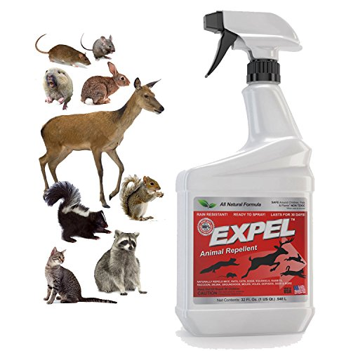 expel-natural-animal-repellent-mice-repellent-ready-to-use-weatherproof-32oz-easy-spray-bottle
