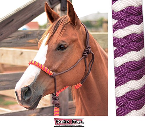 NYLON ROPE HALTER WITH LEAD AND POPPER CLASSIC EQUINE ALL NEW COLORS (Purple-White) Classic Nylon Halters