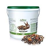 AniForte Deluxe Squirrel Food Mix 1kg: 100% Natural Feed for Squirrels, Chipmunks & Wild Birds