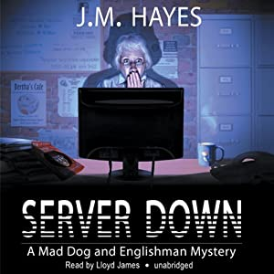Server Down Audiobook