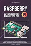 Raspberry Pi 4 Ultimate Guide: From Beginner to