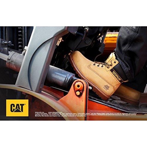 di stivali S3 Caterpillar Honey sicurezza Holton zqt7WExp8w