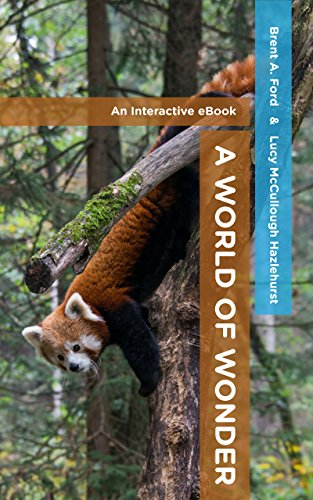 A World of Wonder by [Ford, Brent A., Hazlehurst, Lucy McCullough]