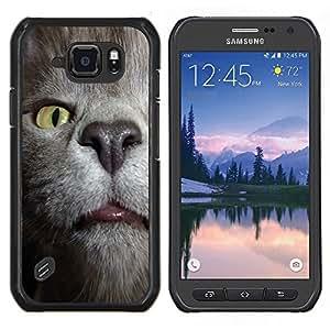 LECELL--Funda protectora / Cubierta / Piel For Samsung Galaxy S6Active Active G890A -- Gato Estornudar Habana Chartreux Azul ruso --