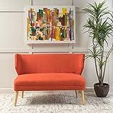 Dumont Mid Century Modern Fabric Loveseat Sofa Settee (Orange) Review