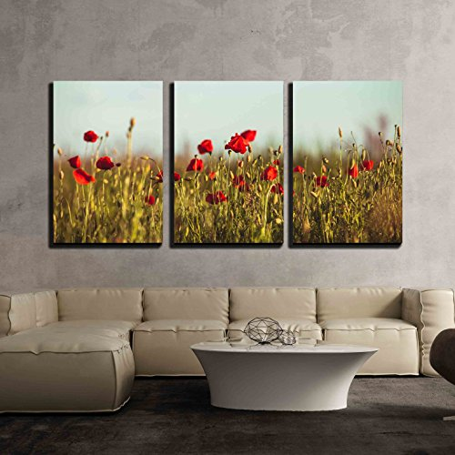 wall26 - 3 Piece Canvas Wall Art - Poppies Field Over Blue Sky with Clouds - Modern Home Decor Stretched and Framed Ready to Hang - 24