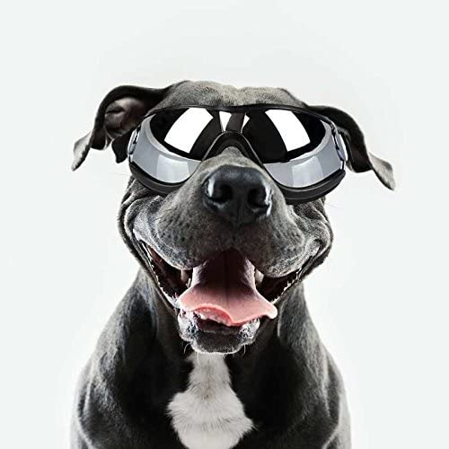 DETI Dog Sunglasses Pet Goggles