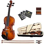 Cecilio-44-CVN-300-Ebony-Fitted-Solid-Wood-Violin