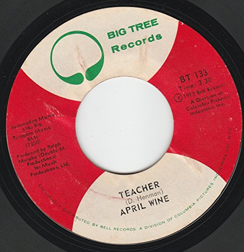 45vinylrecord You Could Have Been A Lady/Teacher (7