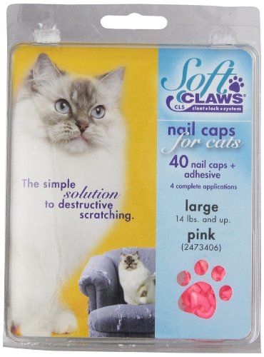 cat feces enzyme cleaner