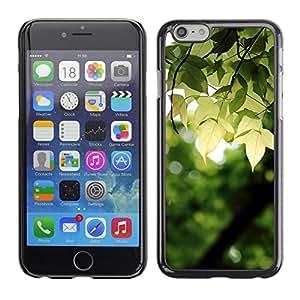 La rotura del amanecer - Metal de aluminio y de plástico duro Caja del teléfono - Negro - Apple (4.7 inches!!!) iPhone 6 / 6S