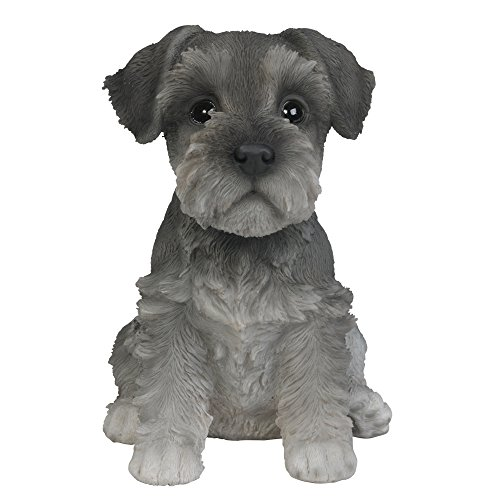 Pacific Giftware Adorable Seated Mini Schnauzer Puppy Collectible Figurine Amazing Dog Likeness Hand Painted Resin 6.5 inch Figurine Great for Dog Lovers Tabletop Decor