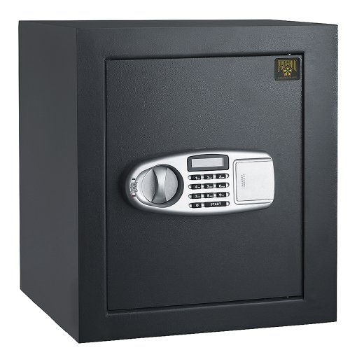 Paragon 7800 Electronic Fire Proof .3 CF Digital Lock and Safe Fire Proof Home Security